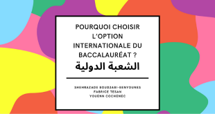 OIB : Pourquoi choisir l'Option Internationale du Baccalauréat ?